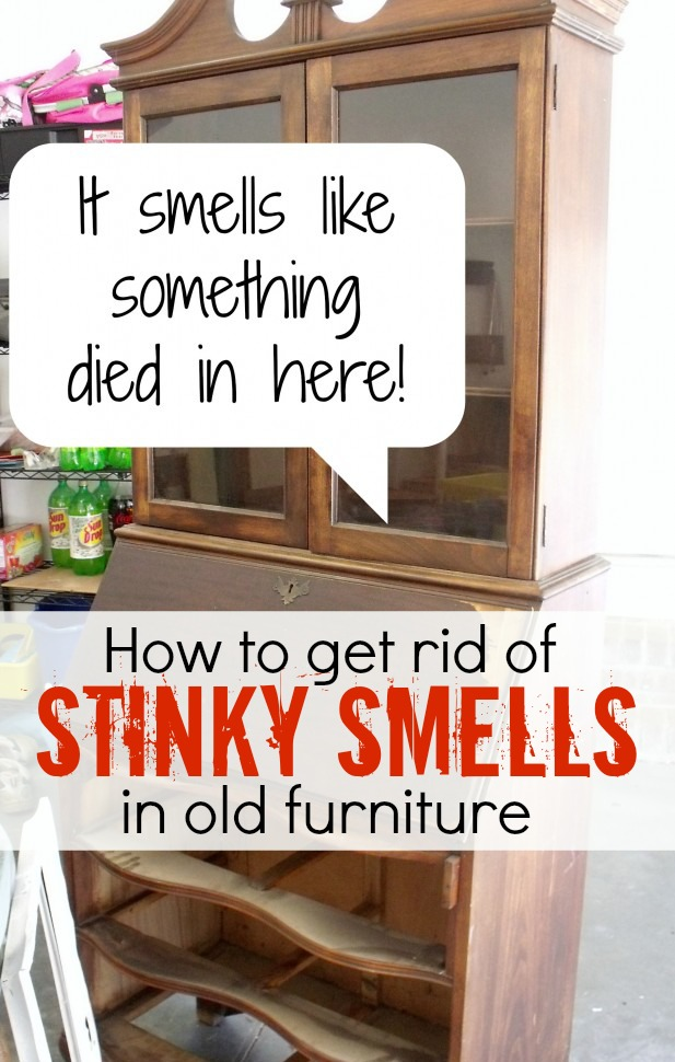 Great Tips: How to get rid of odor in furniture by AttaGirlSays.com