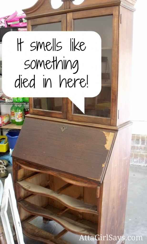 How to get gross smells out of old furniture - Atta Girl Says