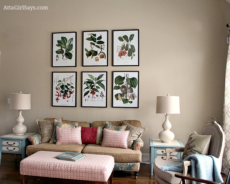 living room inexpensive botanical prints