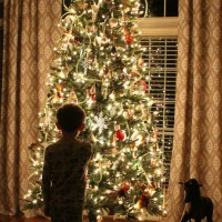 Glowing Christmas Tree photo of Jackson by AttaGirlSays.com