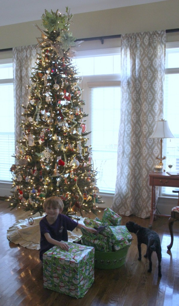 Jackson and his advent presents decorated Christmas tree