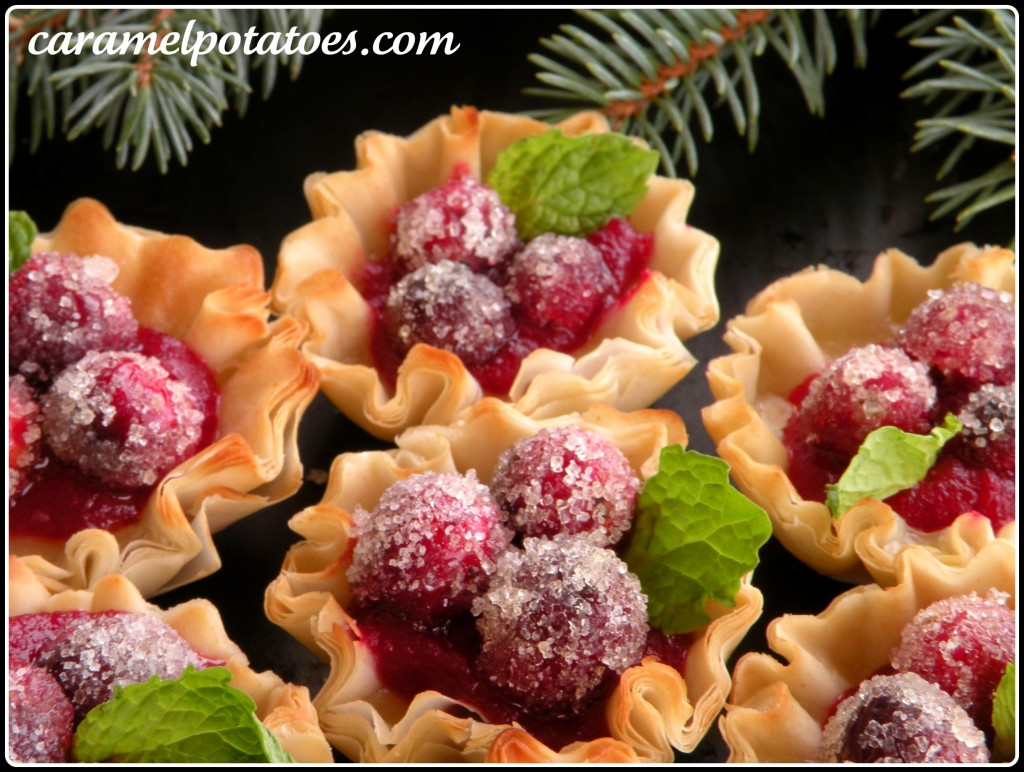 Sparkling Cranberry Cups by Caramel Potatoes