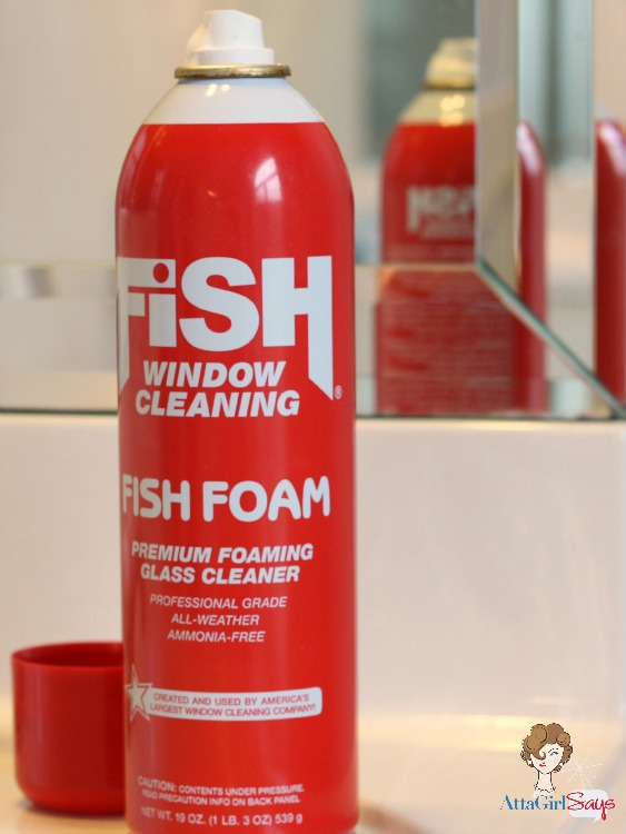 Cleaning Tip: How to Get Streak Free Mirrors with Fish Foam