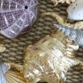 FEATURED Gilded Gold Leaf and Silver Seashells