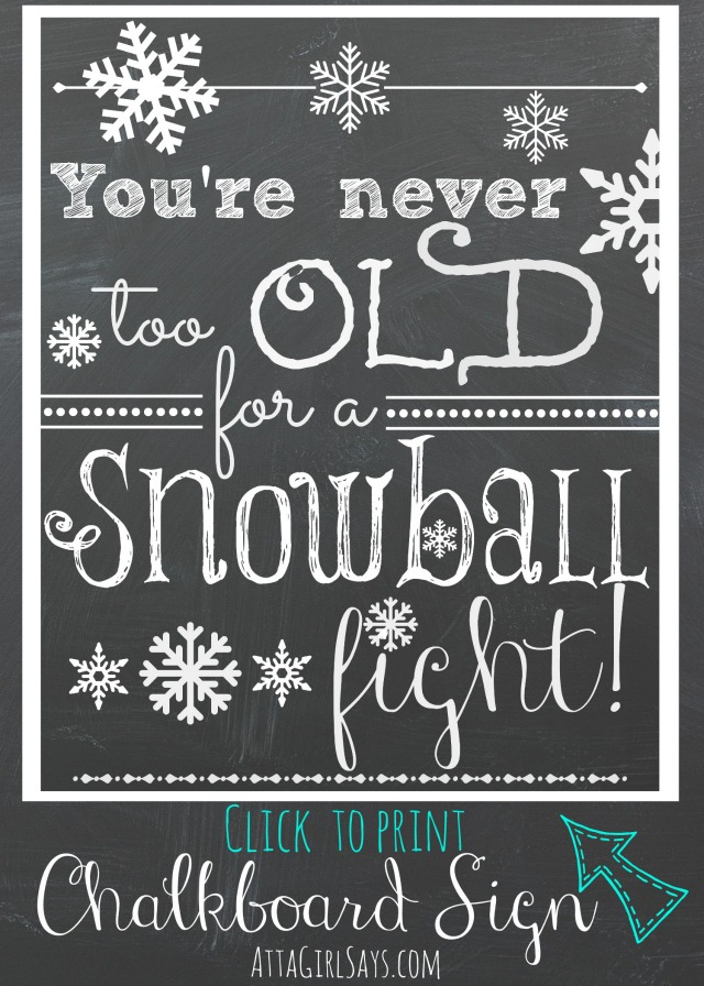 Snowball Fight Quotes. QuotesGram