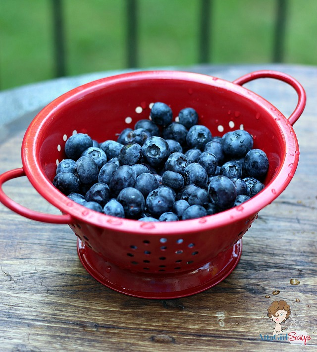 Blueberry Snack #lovehealthyme #wwsponsored