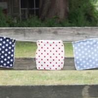 Stars & Stripes Patriotic Bunting