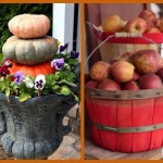10 Simple Ideas to Get In the Mood for Fall: Fall Craft Ideas, Decorating Inspiration & Recipes