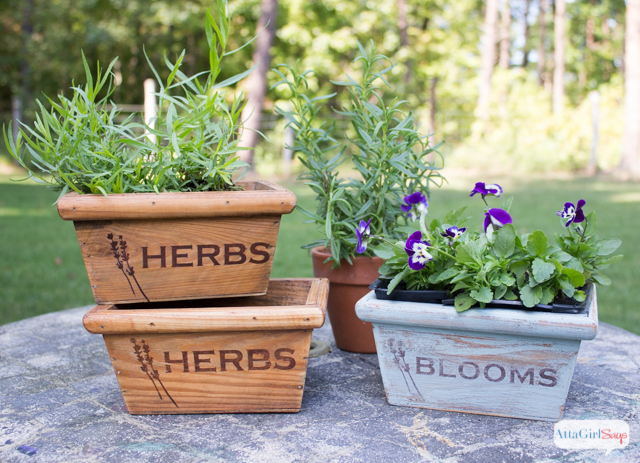 Stenciled & Stained Wooden Herb Boxes #woodprojectshoa with AttaGirlSays.com