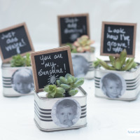 Mini Succulent Garden Personalized Birthday Party Favors