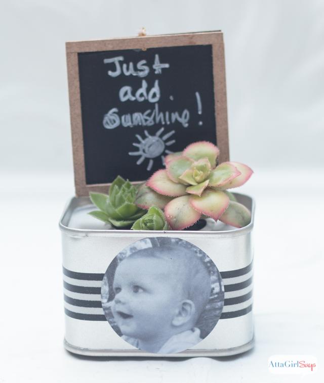 Mini Succulent Garden Personalized Birthday Party Favors Atta