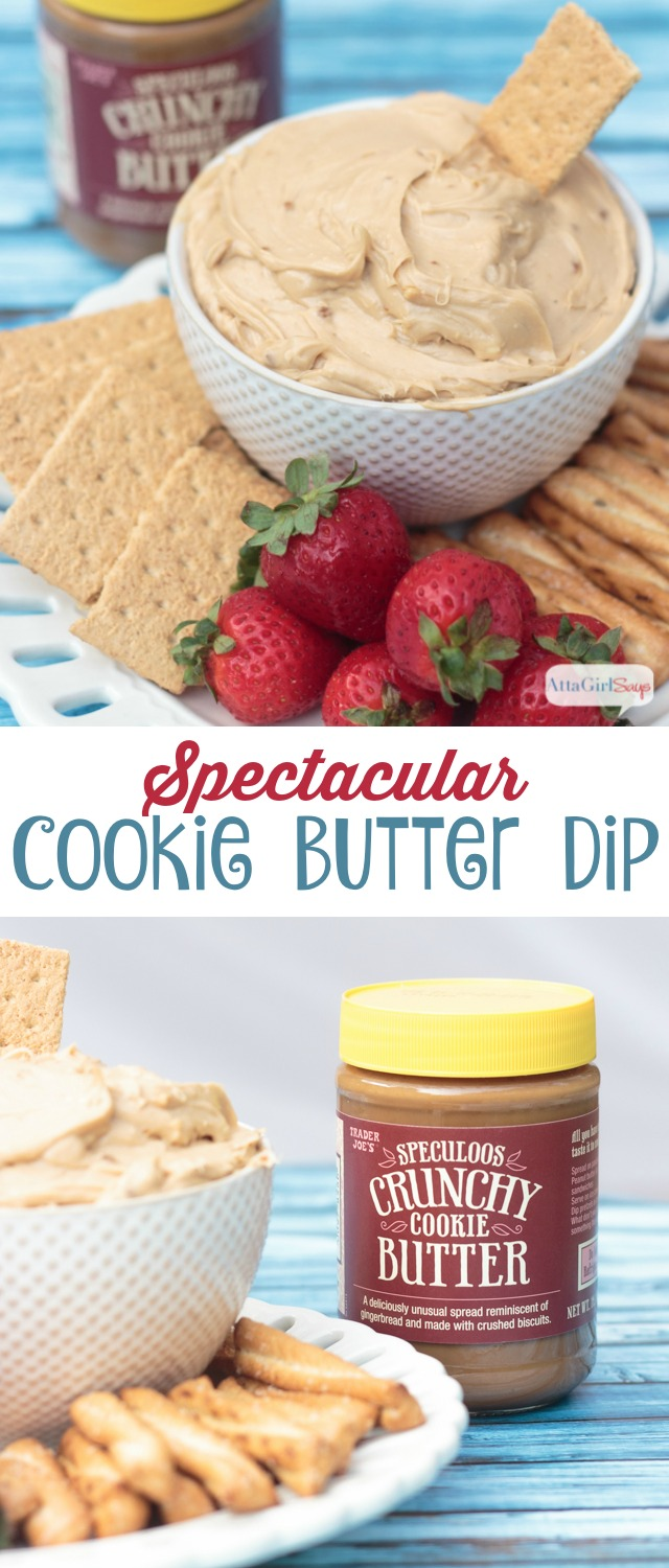 bowl of cookie butter dip with strawberries and graham crackers