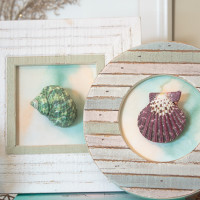 25+ Gorgeous Seashell Crafts To Make This Summer