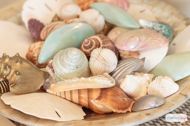 Such pretty, colorful seashells displayed in a shell bowl. Effortless coastal decor.