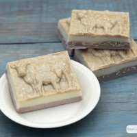 DIY Layered Oatmeal Soap Recipe