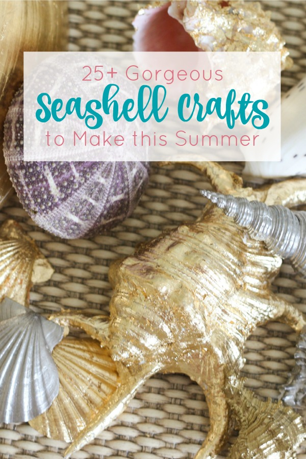 This is amazing collection of seashell crafts. Learn how to make everything from seashell artwork to lamps to jewelry to home decor items . It's time to hit the beach and start collecting shells!