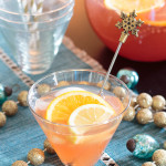 This adults-only party punch recipe is spiked with bourbon and vodka. The festive combination of flavors is great for a Christmas party or a New Year's Eve celebration.