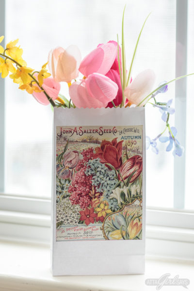 Printable Vintage Seed Catalog Party Favor Bags