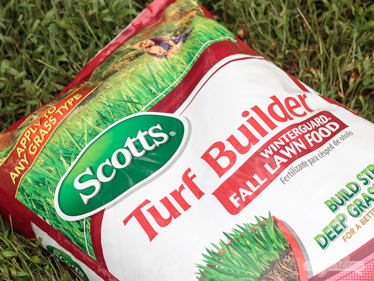 Bag off Scotts Turf Building Fall Lawn Food lying on grass