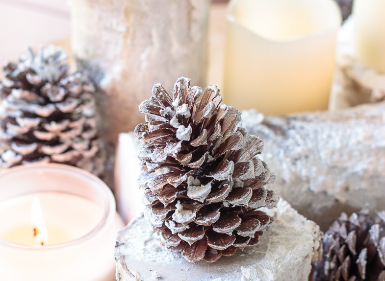 Snowy Birch Logs Winter Centerpiece with a snow-dusted pinecone on a snowy birch log