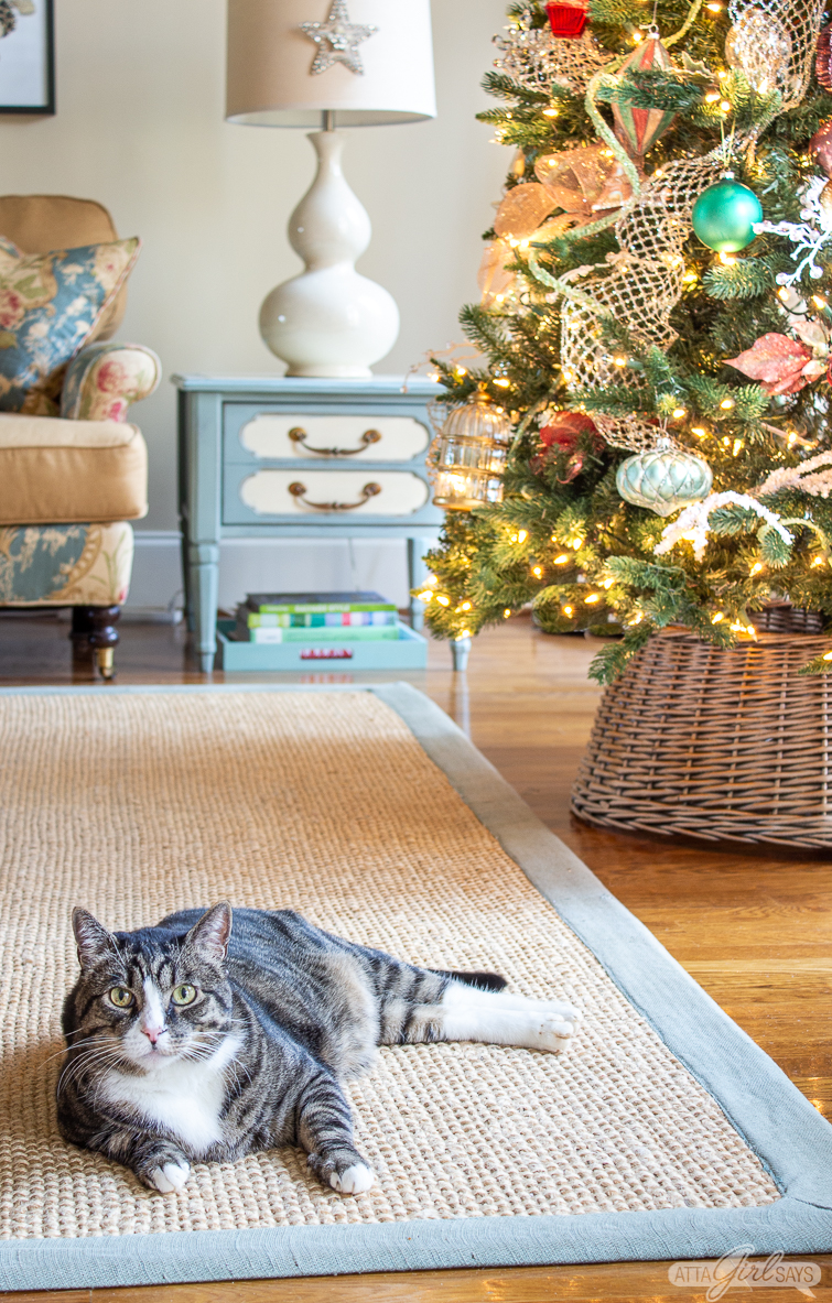 tabby cat lying on a seagrass rug in front of a Christmas tree